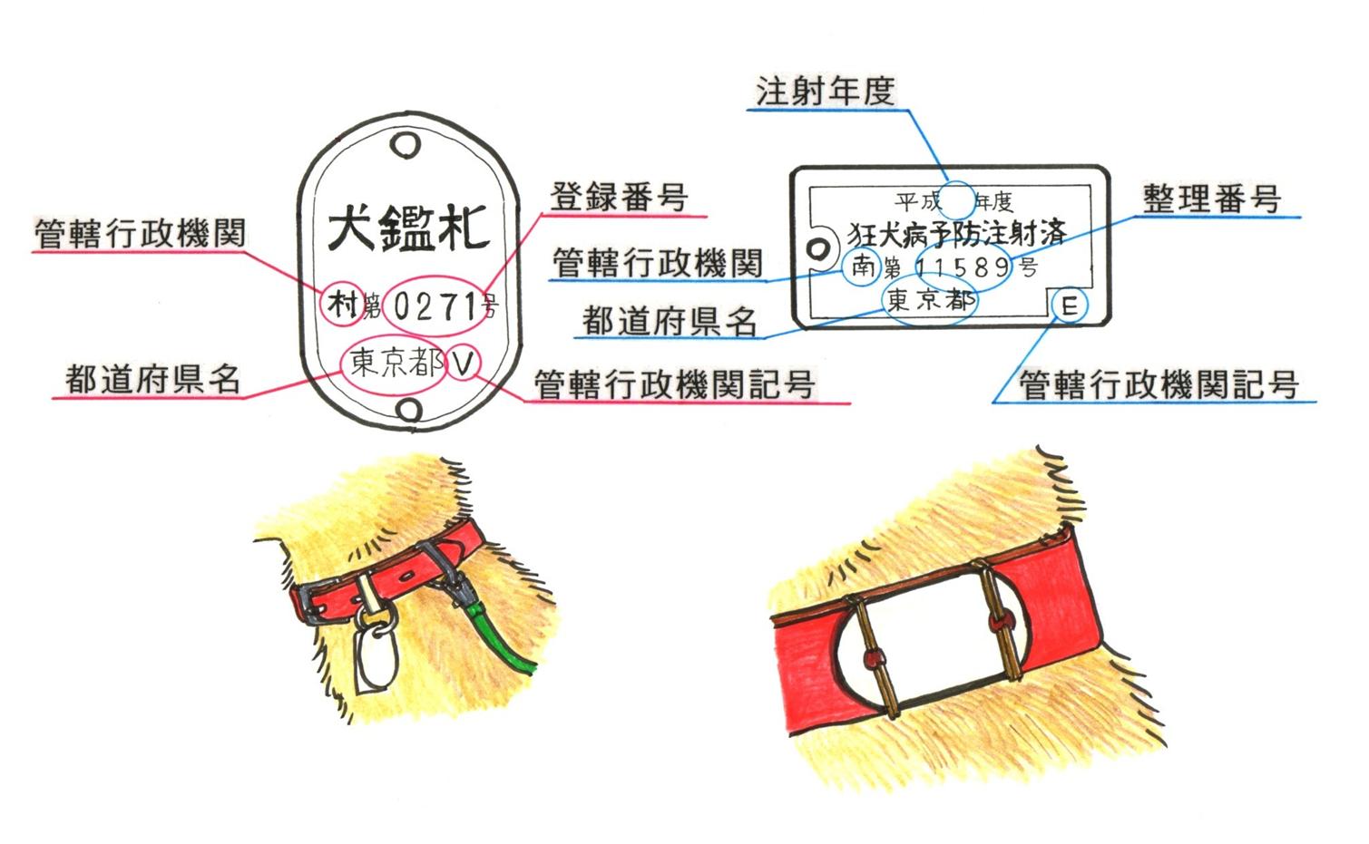 監察及び装着例のイラスト図